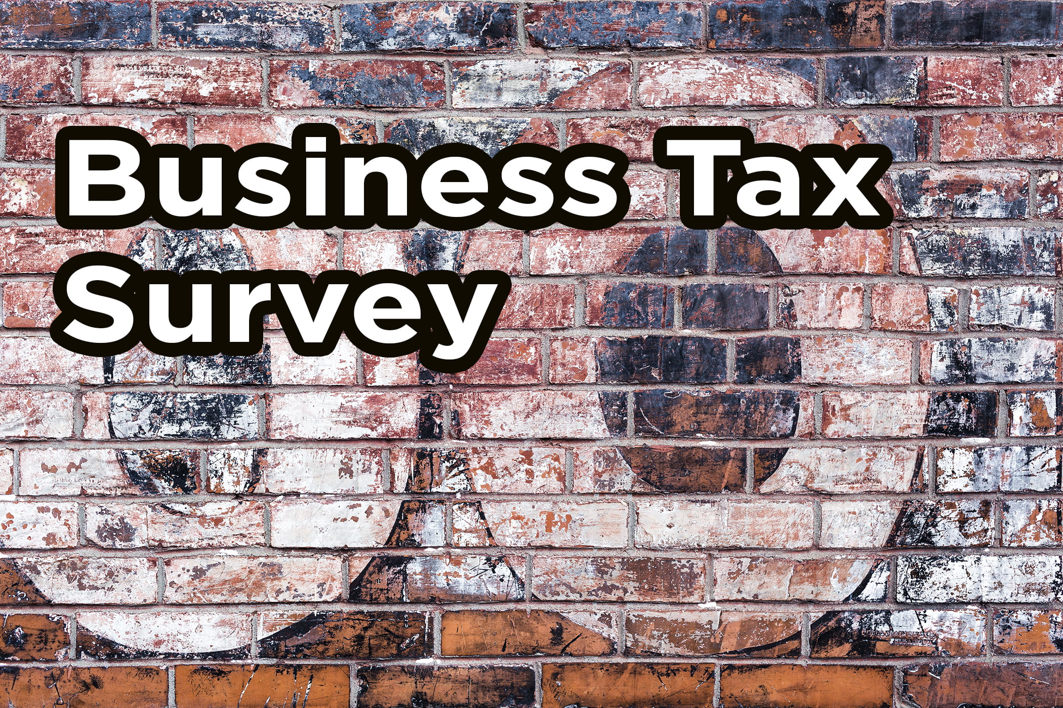 state and local tax survey
